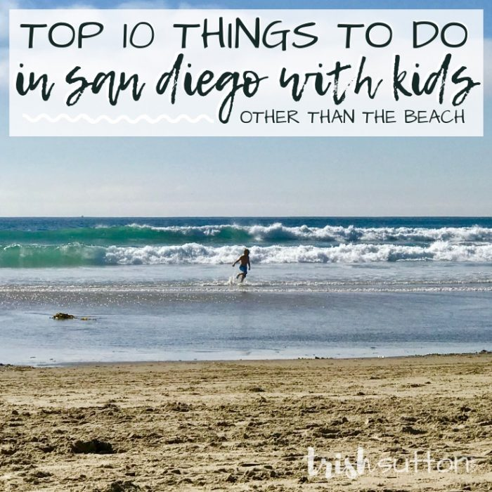 Top 10 Things To Do In San Diego With Kids