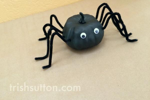 Long Legged Pumpkin Spider   Cute Halloween Decor. A spider that is too cute to fear and it is made from a mini pumpkin! Creepy fun by TrishSutton.com.
