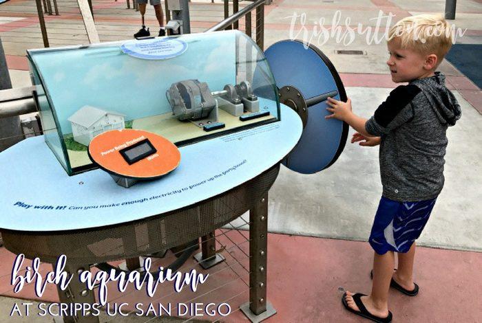 Birch Aquarium at Scripps UC San Diego, TrishSutton.com